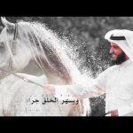 واحر قلباه مشاري العفةسي