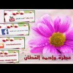 صفكات صالح اللامي