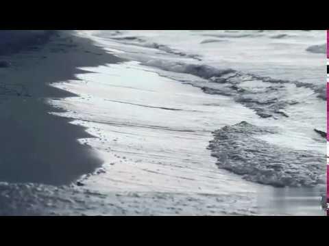 تحميل موسيقى مسلسل جبل الحلال