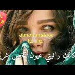 مرتضى پاشايى (ديدى رفتى) مترجمة للعربي Morteza Pashaie - Didi