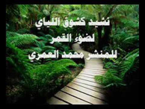 تحميل انشودة كشوق الليالي لضوء القمر للمنشد محمد العمري mp3