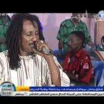 قالوا على شقى و مجنون غناء احمد هاشم