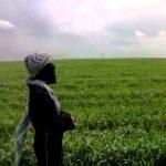 اجمل صوت بنت عراقية موال حزين 2015 ورده البغداديه الجديده