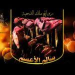 دحية ناااار 2017 مع ملك الدحية سالم الأعسم