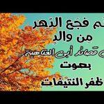 قصيدة: لكم فجع الدهر من والد. لأبي العتاهية .بصوت :الشيخ ظفر بن راشد الدوسري
