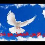 أغنية يا أمه حمامي طار _ من اوبرا التانية في الغرام ألحان حمد الحجار - تأليف واخراج سامح العلي _