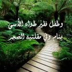 اجمل نشيد لمحمد العمري Mohammad Al Omari