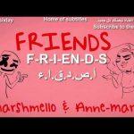 Marshmello AnneMarie FRIENDS Lyrics Video مترجمة