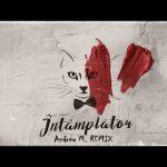The Motans - Intamplator | Arty Violin Remix