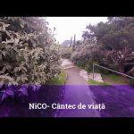 NICO - Scopul si durata (Lyric Video)