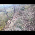 عايم في بحر الغدر التوزيع الجديد حصريا 2020 ريمكس فيديو كليب