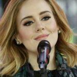 Adele vs Modern Talking Set Fire To The Rain Video Remix